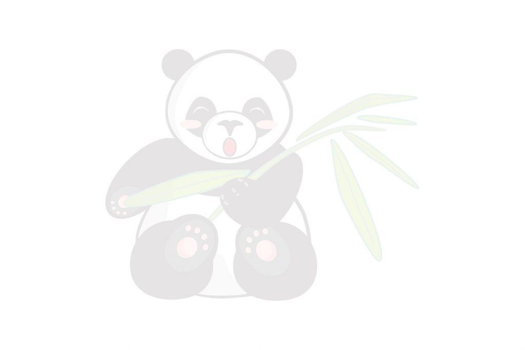 Coloriage de panda avec sa tige de bambou